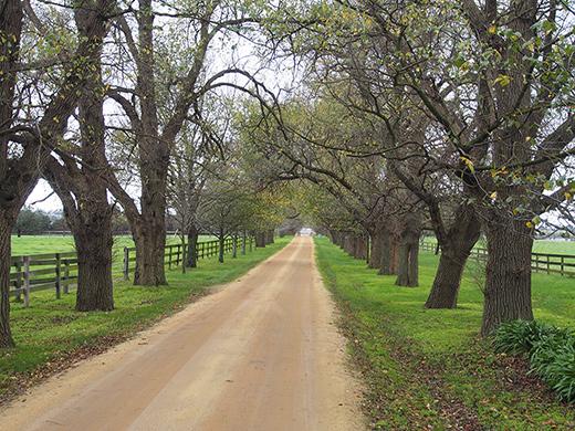 rural-subdivisions-victoria
